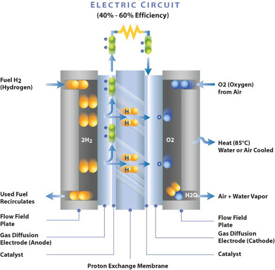 Membrane_Electrode_Assembly_-_Electro-Chemical_Reaction_Diagram.jpg